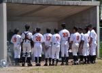 第9回日本少年野球北陸1年生大会のお知らせ